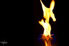 Dancing Flame..